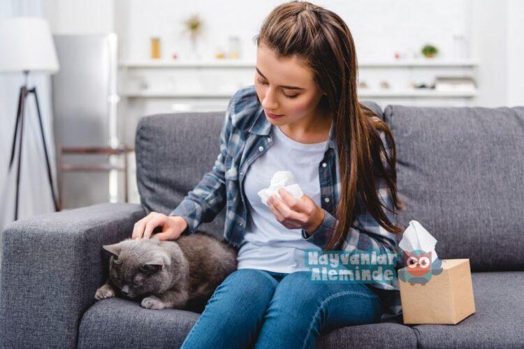 kedi tüyü alerjisi belirtileri