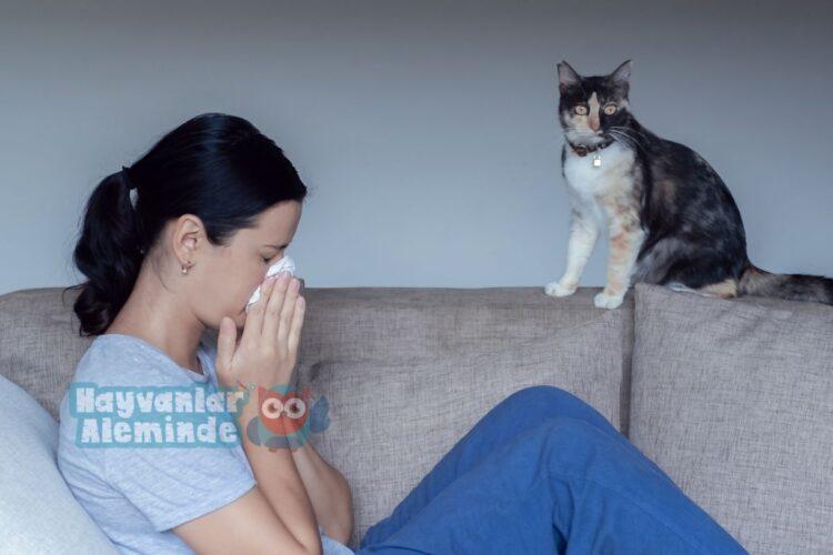 kedi tüyü alerjisi tedavisi
